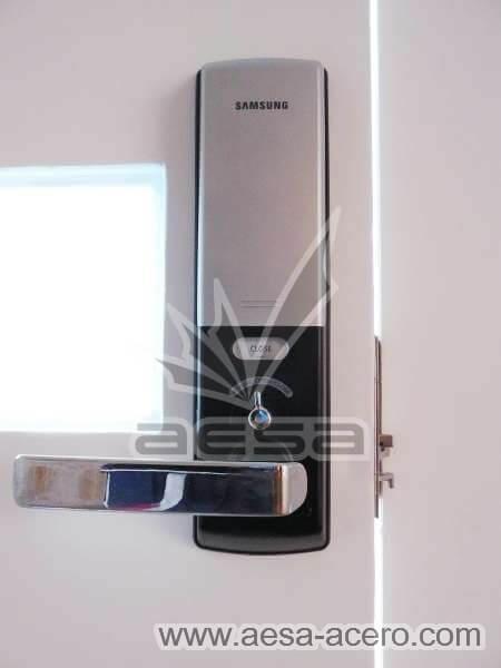 0980-512-porton-minimalista-vidrios-rectangulares-moderno-chapa-electrica-panel-interior