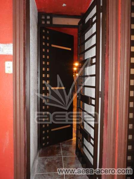 0200-117-puerta-minimalista-cuadricula-vidrios-moderna-seguridad-herreria